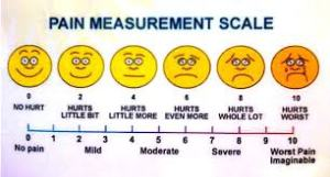 Measurement Scale